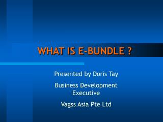 WHAT IS E-BUNDLE ?