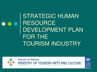 STRATEGIC HUMAN RESOURCE DEVELOPMENT PLAN FOR THE  TOURISM INDUSTRY