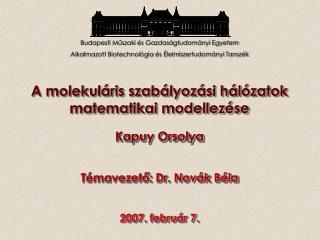 A molekuláris szabályozási hálózatok matematikai modellezése