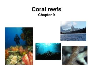 Coral reefs Chapter 9