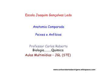 Escola Joaquim Gonçalves Ledo Anatomia Comparada Peixes e Anfibios Professor Carlos Roberto