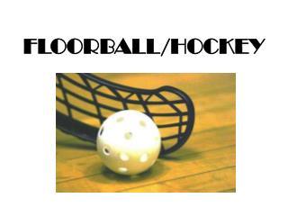 FLOORBALL/HOCKEY