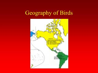 Geography of Birds