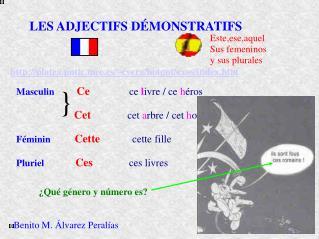 LES ADJECTIFS D�MONSTRATIFS