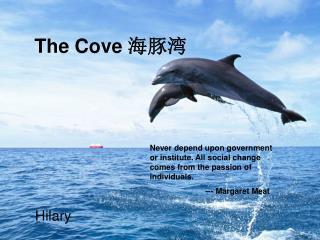 The Cove  海豚湾