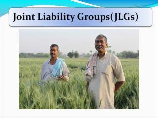 Informal group comprising 4-10 individuals.