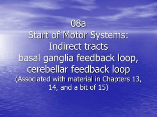 Overview of the motor  systems