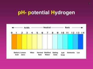 pH- p otential  H ydrogen