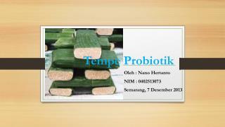 Tempe  Probiotik