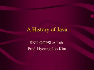 A History of Java
