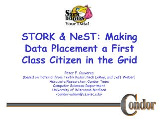 STORK & NeST: Making Data Placement a First Class Citizen in the Grid