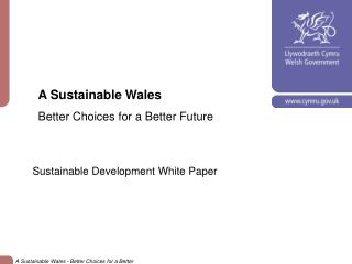 A Sustainable Wales Better Choices for a Better Future