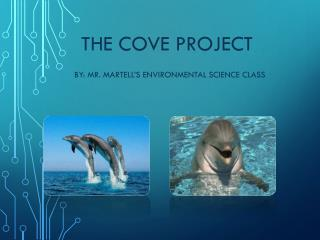 The Cove Project