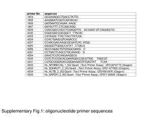 Supplementary Fig.1: oligonucleotide primer sequences