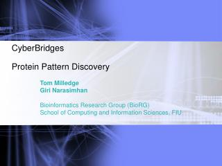CyberBridges  Protein Pattern Discovery