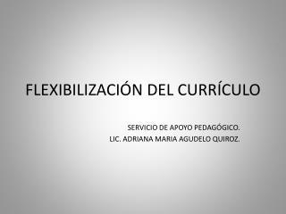FLEXIBILIZACI�N DEL CURR�CULO