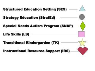 Structured Education Setting (SES) Strategy Education (StratEd)