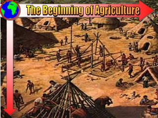 The Beginning of Agriculture