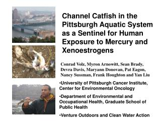 University of Pittsburgh Cancer Institute, Center for Environmental Oncology