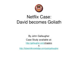 Netflix Case: David becomes Goliath
