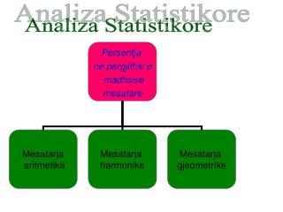 Analiza Statistikore