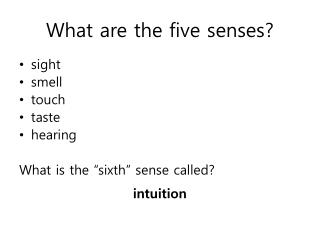 What are the five senses?