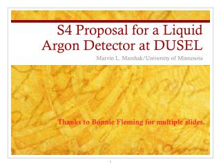 S4 Proposal for a Liquid Argon Detector at DUSEL