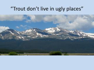 """Trout don't live in ugly places"""