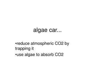 algae car...