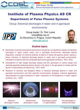 Institute of Plasma Physics AS CR Department of Pulse Plasma Systems