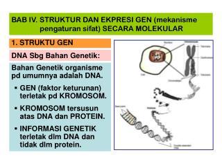 DNA Sbg Bahan Genetik: