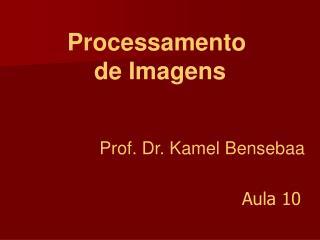 Prof. Dr. Kamel Bensebaa