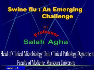 Swine flu : An Emerging              Challenge