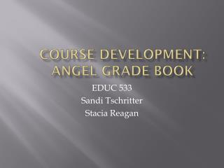 Course Development: 	ANGEL Grade Book