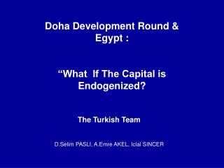 Doha Development Round  Egypt :   What  If The Capital is Endogenized