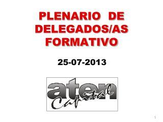 PLENARIO  DE DELEGADOS/AS  FORMATIVO