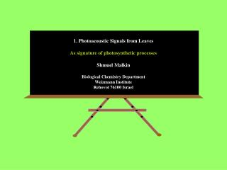 1. Photoacoustic Signals from Leaves As signature of photosynthetic processes Shmuel Malkin
