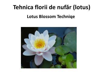 Tehnica f lo rii  de nufăr  (lotus)
