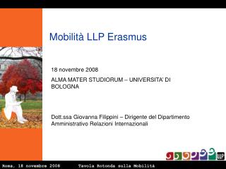 Roma, 18 novembre 2008       Tavola Rotonda sulla Mobilità