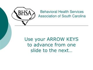 Behavioral Health Services Association of South Carolina