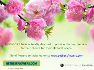 Punsons Flora Online Florist in India