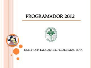 PROGRAMADOR 2012