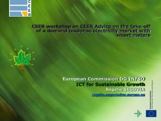 European Commission DG INFSO ICT for Sustainable Growth Rogelio SEGOVIA  rogelio.segoviaec.europa.eu