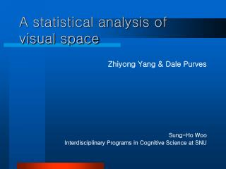 A statistical analysis of visual space