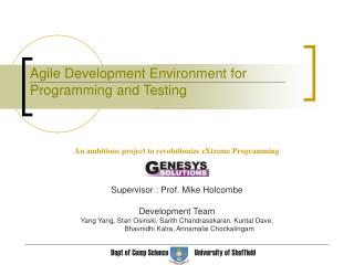 Agile Development Environment for Programming and Testing