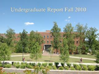 Undergraduate Report Fall 2010