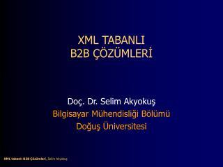 XML TABANLI B2B   Z MLERI