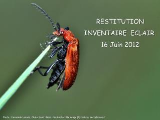 RESTITUTION INVENTAIRE  ECLAIR  16 Juin 2012
