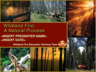 Wildland Fire:  A Natural Process