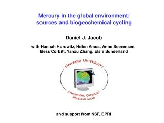 Mercury in the global environment:  sources  and biogeochemical cycling
